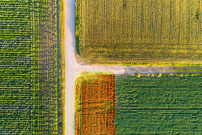 Lovell Johns Blog Drones for mapping solutions Agriculture